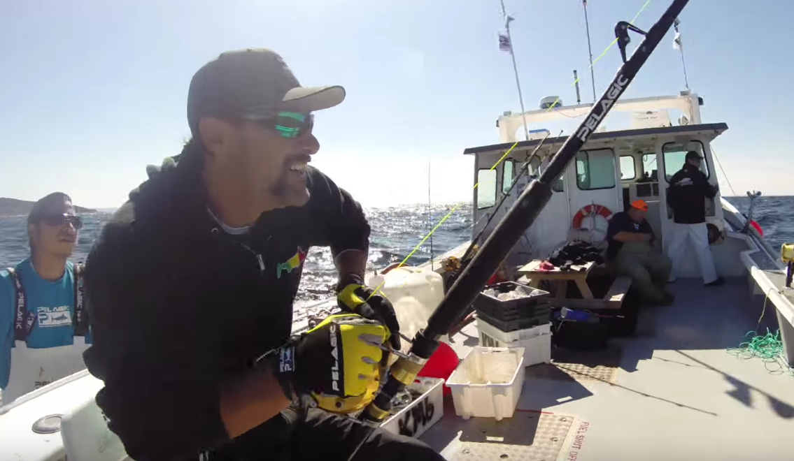 These Amazing Tuna Hunters Are An Instant Sensation